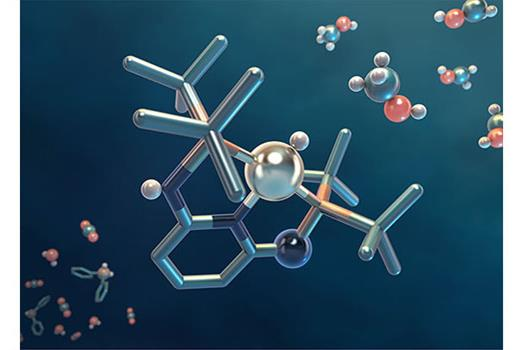 Catalysis captured in a pincer movement