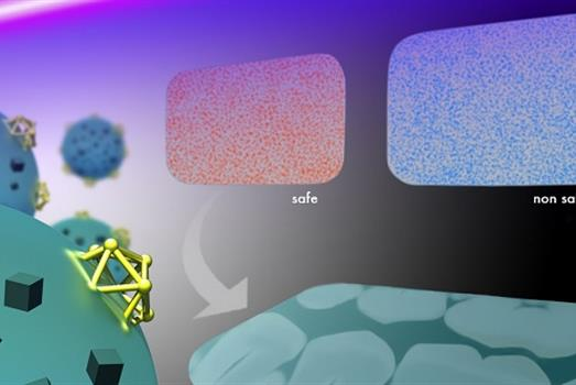 Nanoparticles take a bite out of infections