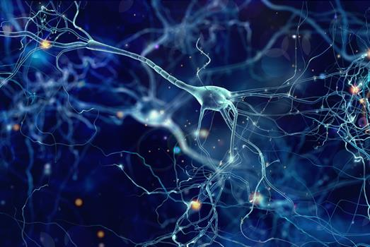 Stimulating deeper insights into brain function