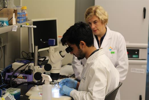 Young scholars eager to experience research